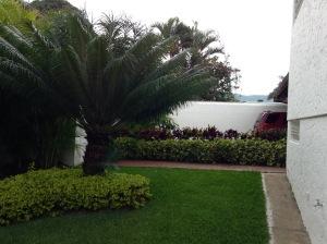 Jardin III